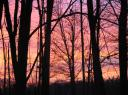 Sunrise 28 November 2007