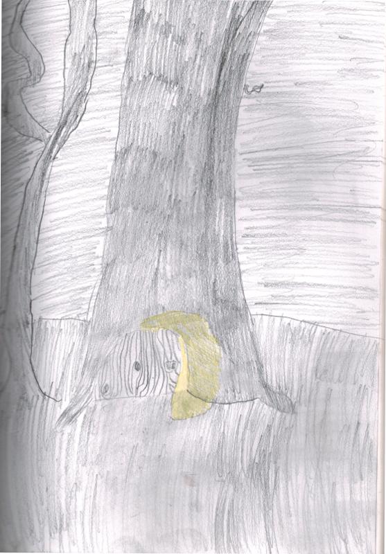 Tree trunksmall